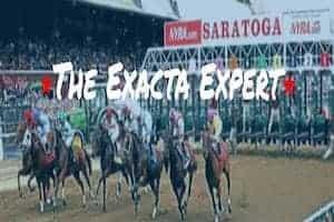the exacta expert header